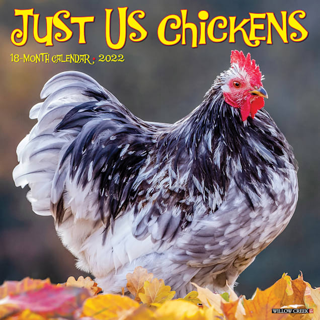 Willow Creek Press Just Us Chickens 2022 Wall Calendar - Carousel image #1