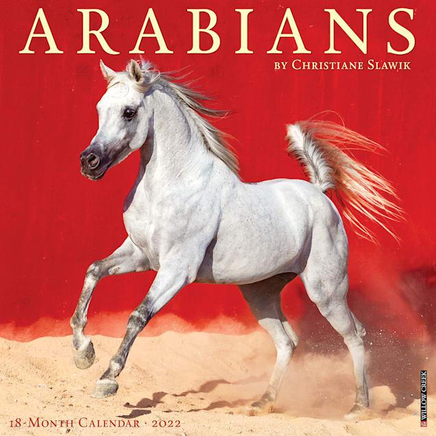 Willow Creek Press Arabians 2022 Wall Calendar - Carousel image #1