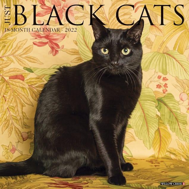Willow Creek Press Just Black Cats 2022 Wall Calendar - Carousel image #1