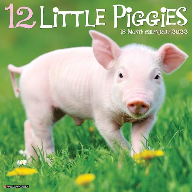 Willow Creek Press 12 Little Piggies 2022 Wall Calendar - Carousel image #1