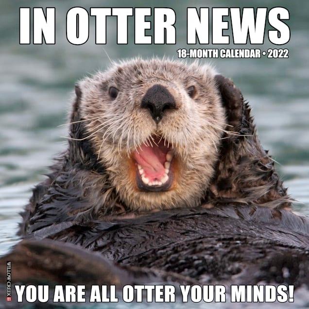 Willow Creek Press In Otter News 2022 Wall Calendar - Carousel image #1