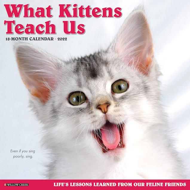 Willow Creek Press What Kittens Teach Us 2022 Wall Calendar - Carousel image #1