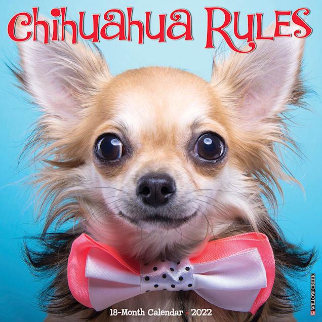 Willow Creek Press Chihuahua Rules 2022 Wall Calendar - Carousel image #1