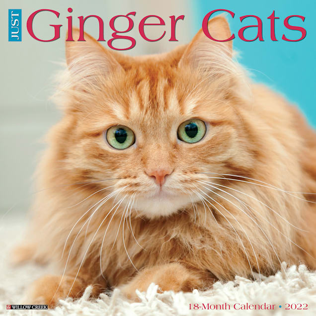 Willow Creek Press Just Ginger Cats 2022 Wall Calendar - Carousel image #1