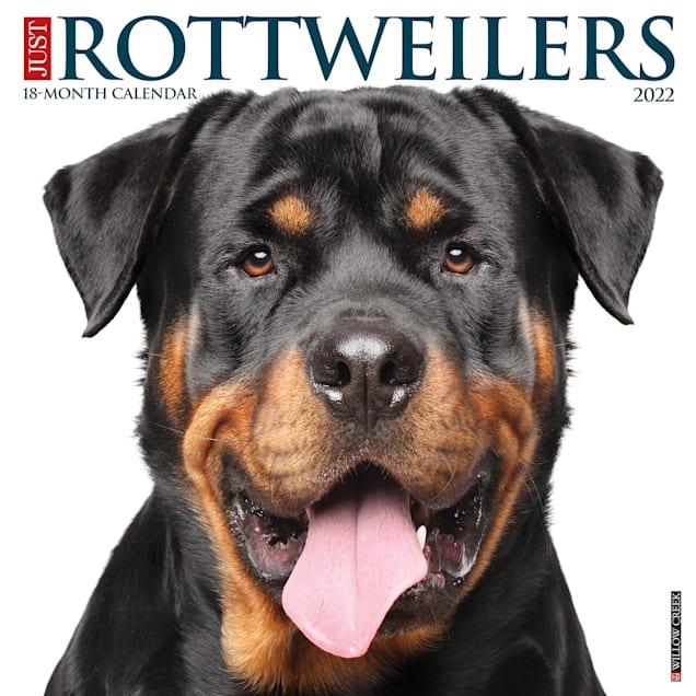 Willow Creek Press Just Rottweilers 2022 Wall Calendar - Carousel image #1