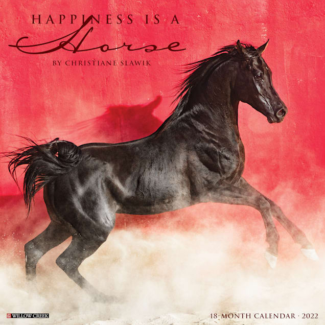 Willow Creek Press Happiness is a Horse 2022 Wall Calendar - Carousel image #1