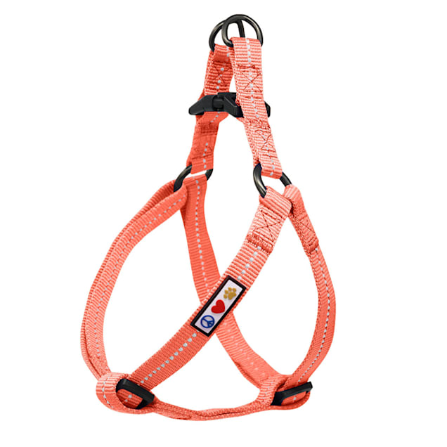Pawtitas Recycled Coral Reflective Step In Dog Harness, X-Small - Carousel image #1