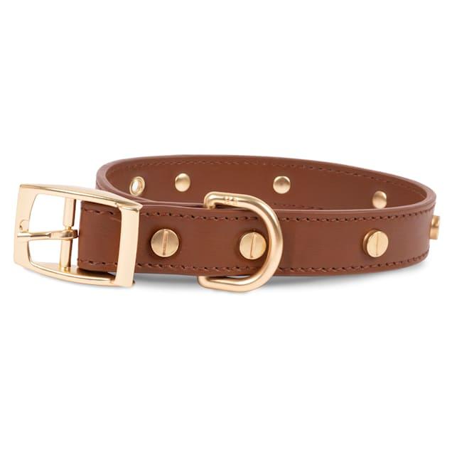 Harry Barker Statement Stud Leather Dog Collar, Medium - Carousel image #1