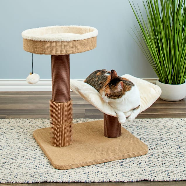 """Two by Two Yaupon Compact But Complete Cat Tree, 17.7"""" L  X 24"""" W X 21.9"""" H - Carousel image #1"""