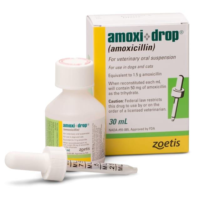 Amoxi Drop (Amoxicillin) Oral Suspension 30ML - Carousel image #1
