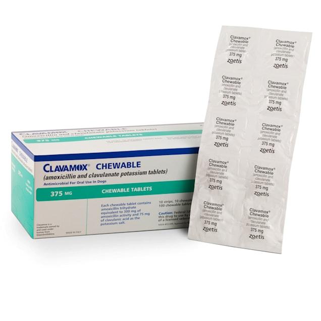 Clavamox Chew 375 mg, 30 Count - Carousel image #1