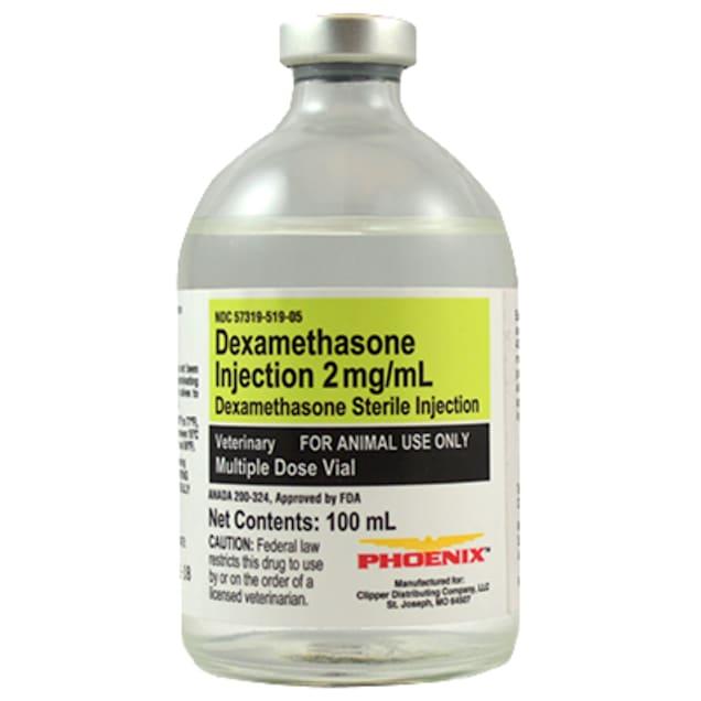 Dexamethasone 2 mg/mL Injection, 100 mL - Carousel image #1