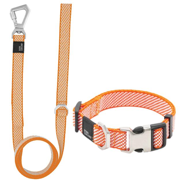 Pet Life Orange 'Escapade' Outdoor Series 2-in-1 Convertible Dog Leash and Collar, Small - Carousel image #1