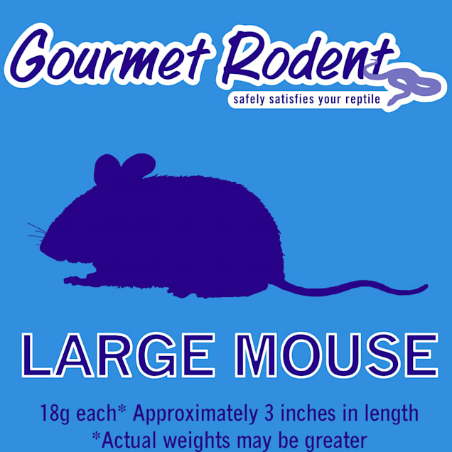 Frozen Large Mouse - 3 Count - Carousel image #1
