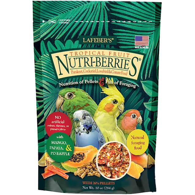 Lafeber's Tropical Fruit Nutri-Berries Keet, Tiel, Lovebird & Conure Food - Carousel image #1