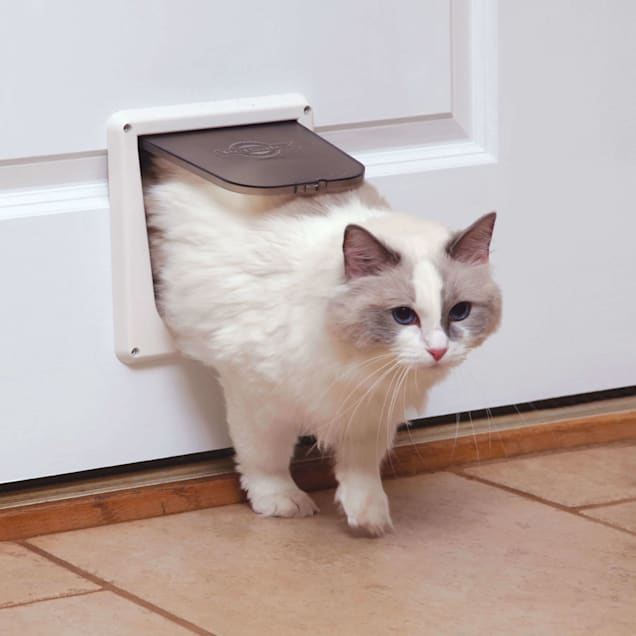PetSafe Deluxe Cat Flap - Carousel image #1