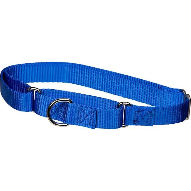 "X-tra Control Collar Blue Large 19""-30""  1"" width - Carousel image #1"