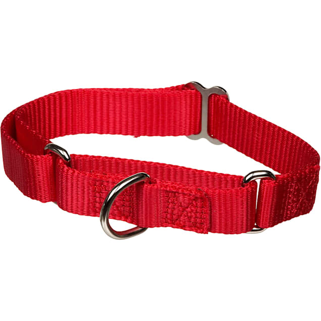 """X-tra Control Collar Red Large 19""""-30""""  1"""" width - Carousel image #1"""