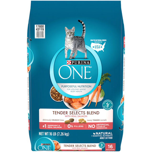 Purina ONE Natural Tender Selects Blend With Real Salmon Dry Cat Food, 16 lbs. - Carousel image #1