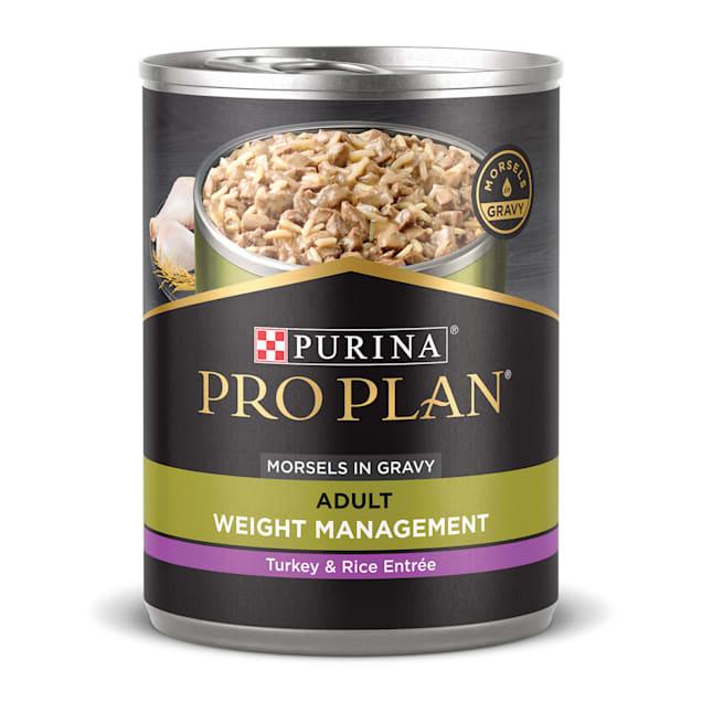Purina Pro Plan High Protein Gravy FOCUS Weight Management Turkey & Rice Entree Wet Dog Food, 13 oz., Case of 12 - Carousel image #1