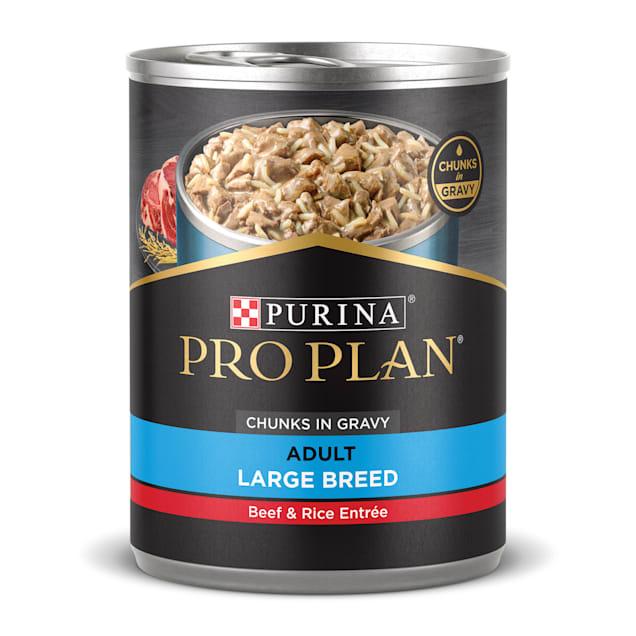 Purina Pro Plan Large Breed Focus Beef & Rice Entree Gravy Wet Dog Food, 13 oz. - Carousel image #1