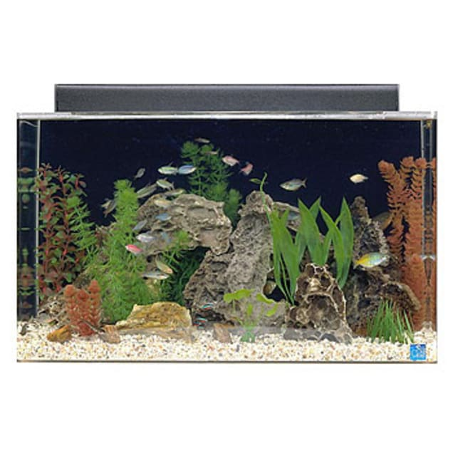 SeaClear 29 Gallon Rectangular Aquarium Combo, Clear - Carousel image #1