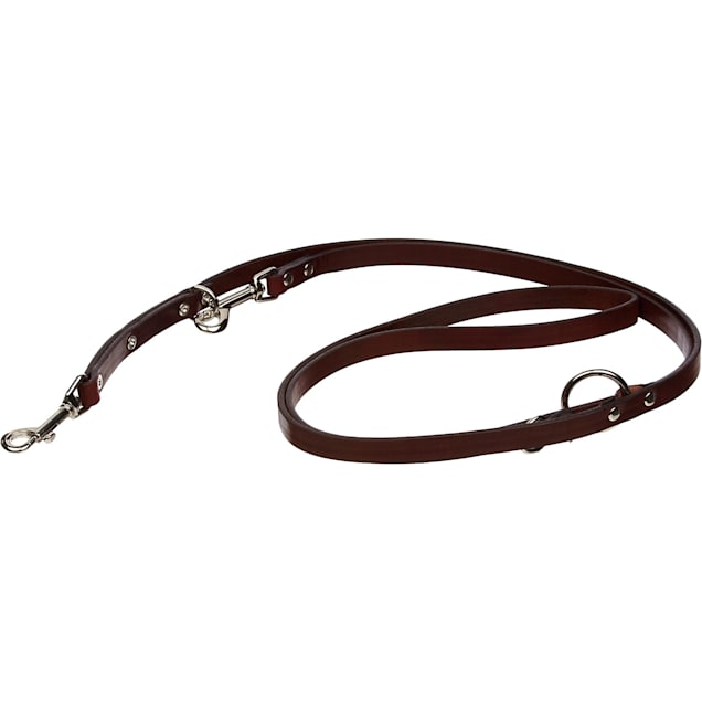 Circle T Euro Leather Dog Leash in Brown - Carousel image #1