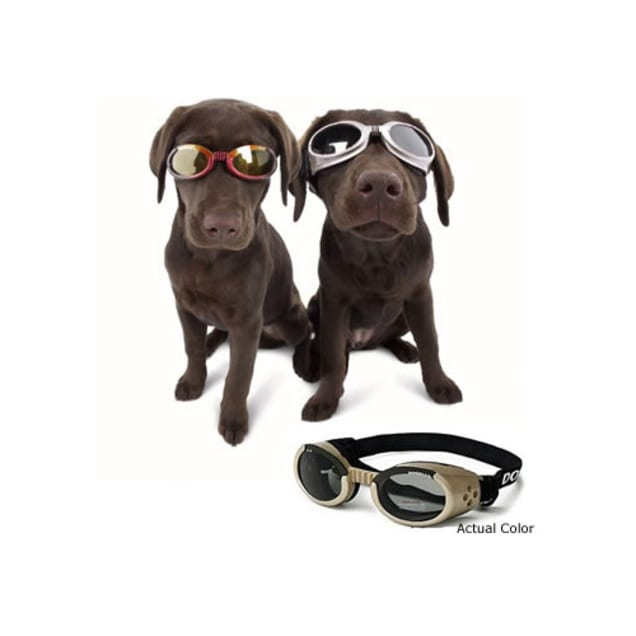 Doggles ILS Protective Eyewear for Dogs, X-Small - Carousel image #1