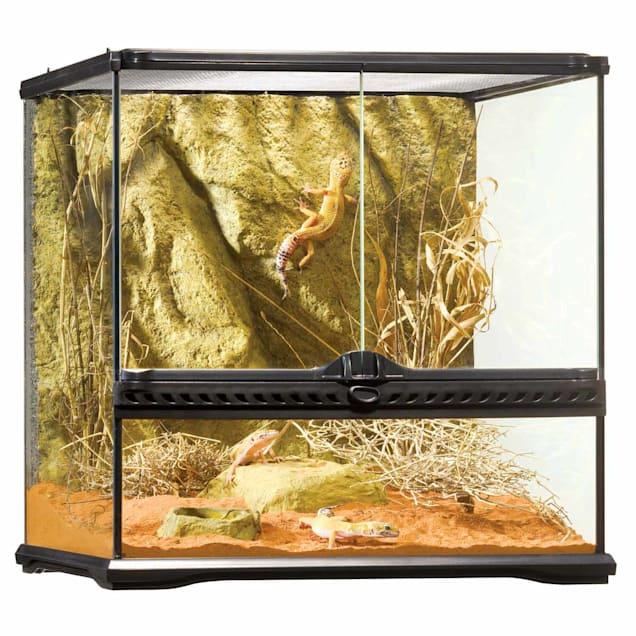 "Exo-Terra Glass Terrarium, 18"" L X 18"" W X 18"" H - Carousel image #1"