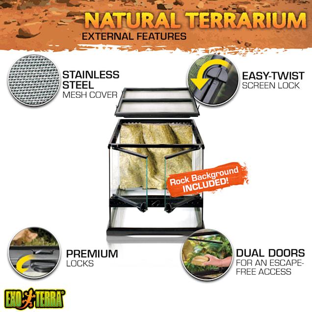 "Exo-Terra Glass Terrarium, 12"" L X 12"" W X 12"" H - Carousel image #1"