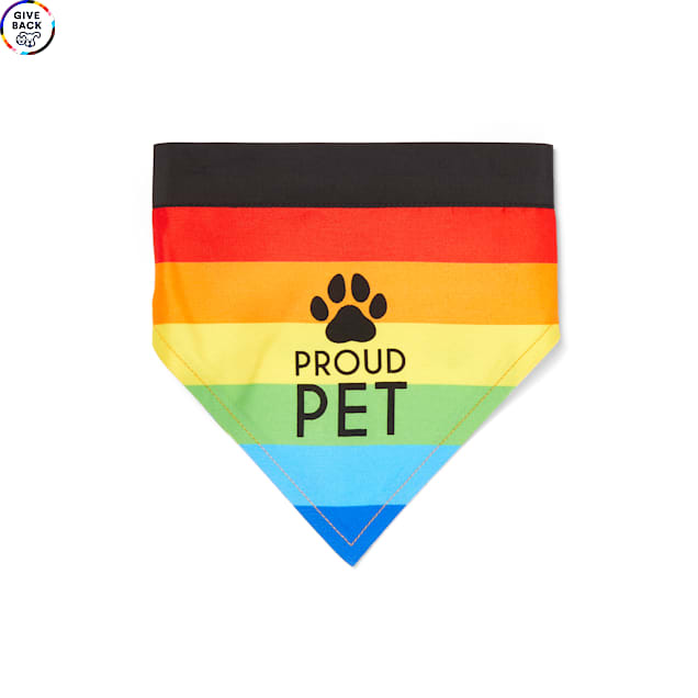 YOULY The Proudest Rainbow Reversible Pet Bandana, X-Small/Small - Carousel image #1