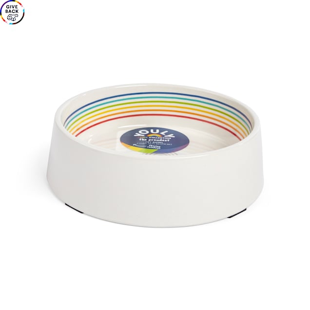 YOULY The Proudest Rainbow Dog Bowl, 3 Cups - Carousel image #1