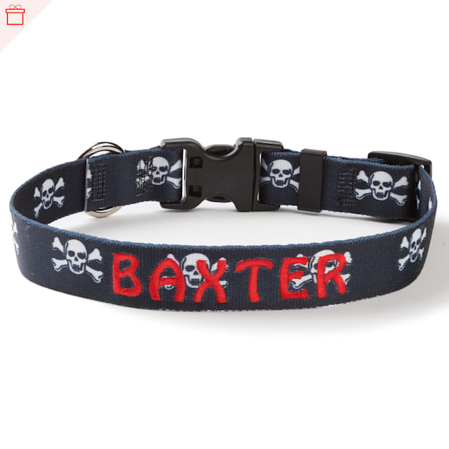 Custom Personalization Solutions Personalized Skulls Dog Collar, Large - Carousel image #1