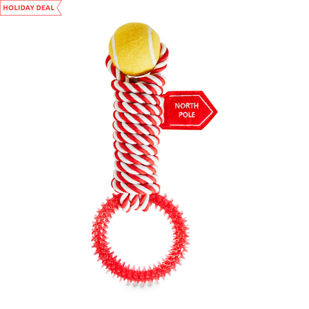 Holiday Tails North Pole Adventures Rope Dog Toy with Cinnamon Scent, Large - Carousel image #1