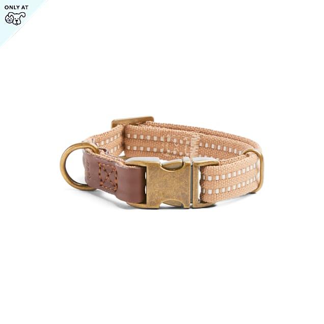 Reddy Tan Webbed Dog Collar, Small - Carousel image #1