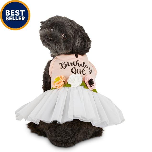 Bond & Co. Birthday Girl Dog Dress, X-Small - Carousel image #1