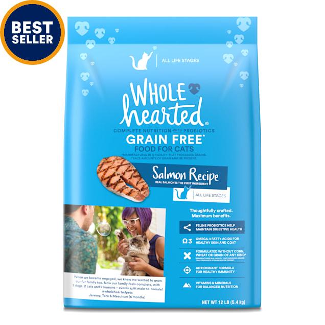 WholeHearted Grain Free Salmon Formula Dry Cat Food, 12 lbs. - Carousel image #1