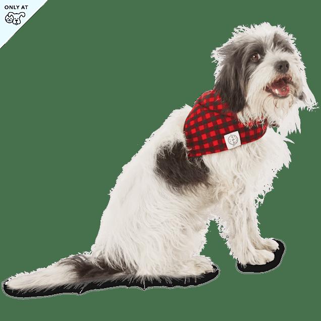 Bond & Co. Buffalo Checkered Dog Bandana,  For Neck Sizes 18-21, Large/Extra Large - Carousel image #1
