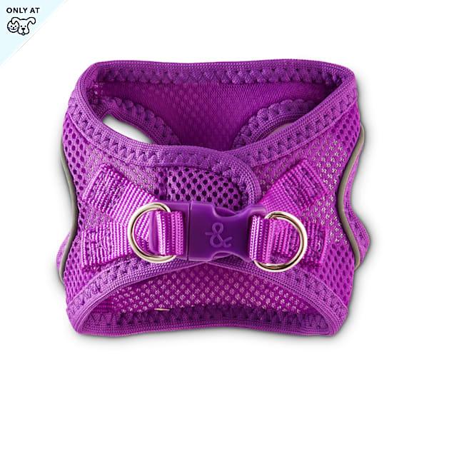 Bond & Co. Reflective Purple Mesh Dog Harness, XX-Small/X-Small - Carousel image #1