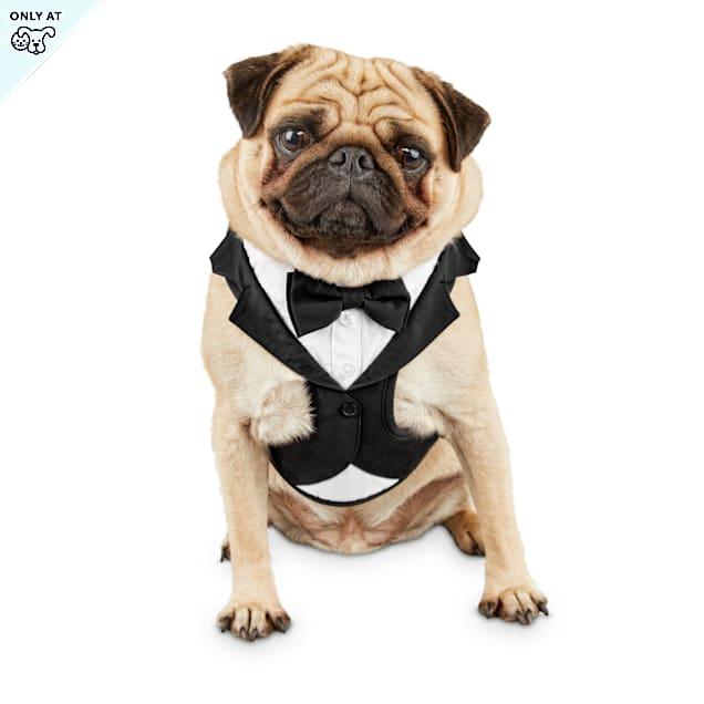 Bond & Co. Tuxedo Dog Harness, X-Small - Carousel image #1