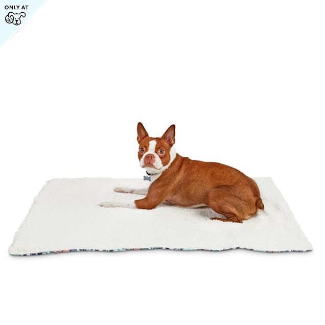 """BOBS from Skechers Doggie Crowd Dog Throw, 27"""" L X 36"""" W - Carousel image #1"""
