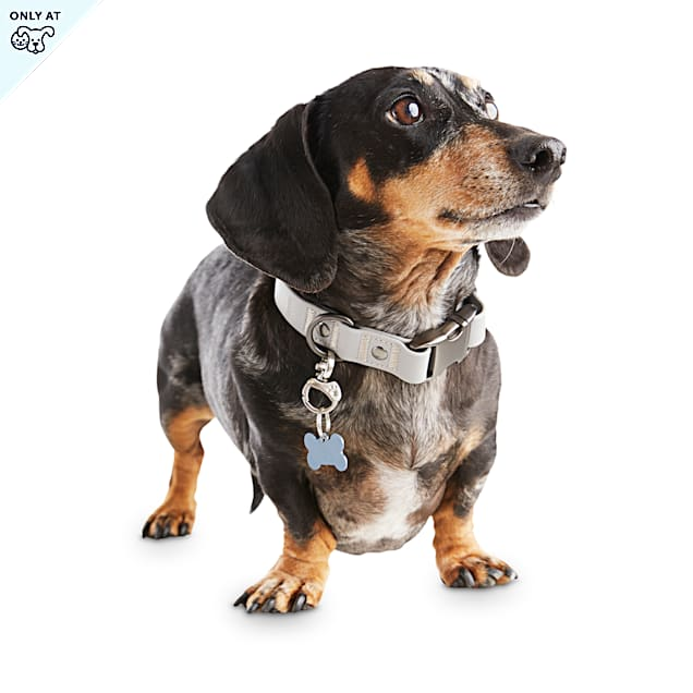 Reddy Grey Durable Dog Collar, Small - Carousel image #1