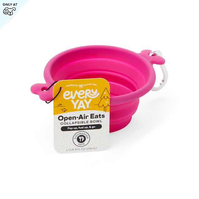 EveryYay Open-Air Eats Pink Collapsible Bowl for Dogs, 1 Cup - Carousel image #1
