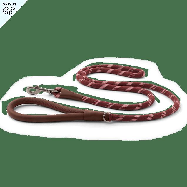 Reddy Burgundy Rope Dog Leash, 6 ft. - Carousel image #1