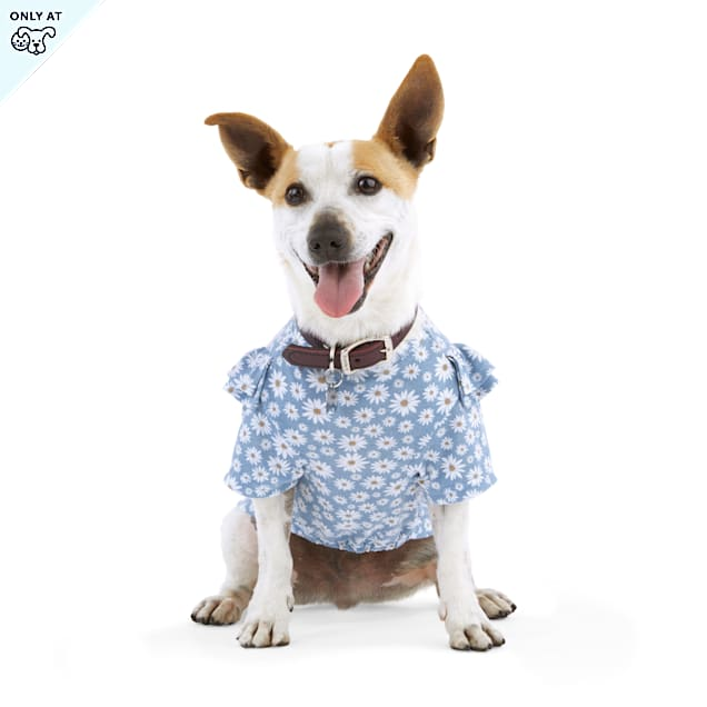 Bond & Co. Started As A Bottle Recycled & Reinvented Happy Daisies Dog T-Shirt, XX-Small - Carousel image #1