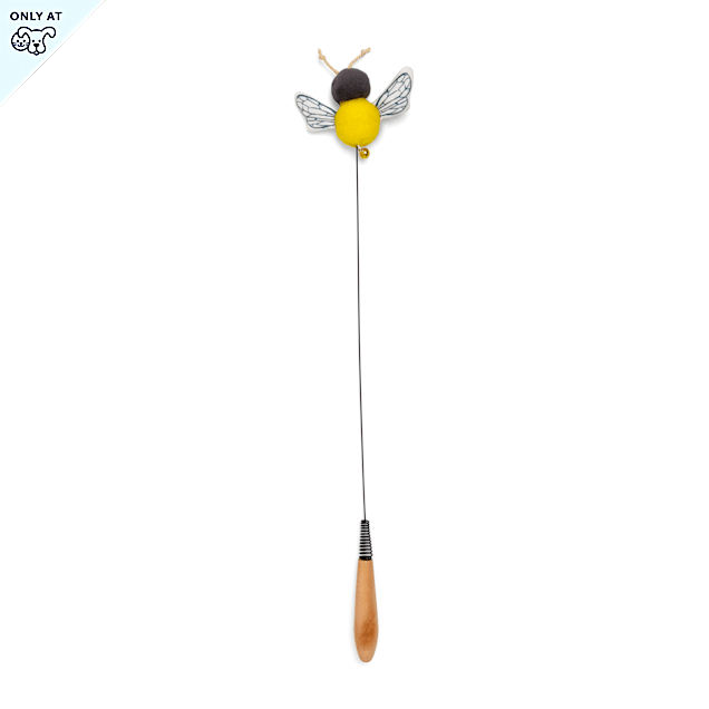 Bond & Co. Started As A Bottle Recycled & Reinvented Fly Fried Bee Cat Teaser Toy, Small - Carousel image #1