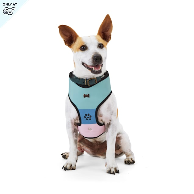 BOBS from Skechers Loverboy Reversible Dog Harness, X-Small - Carousel image #1