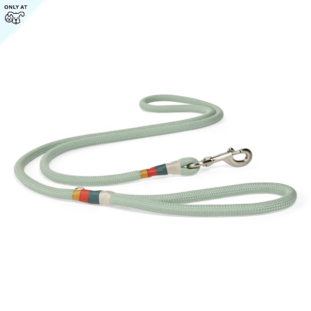 YOULY The Wanderer Green Rope Dog Leash, 6 ft. - Carousel image #1