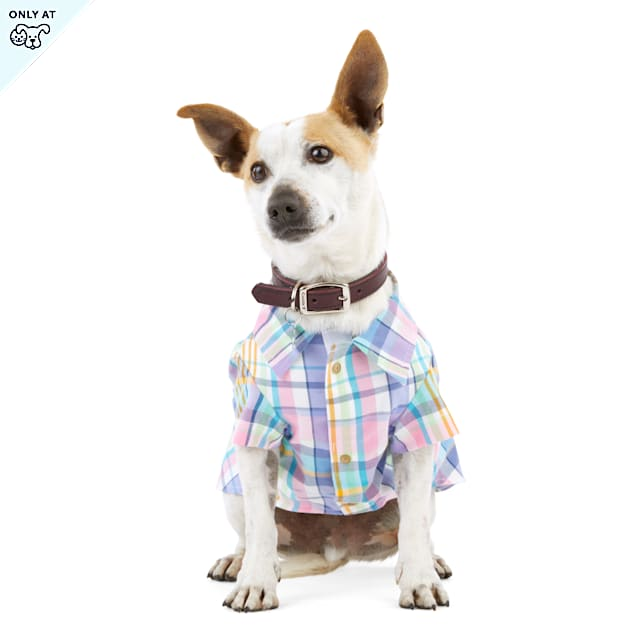 YOULY The Sophisticate Multicolor Woven Plaid Dog Button-Up Shirt, X-Small - Carousel image #1