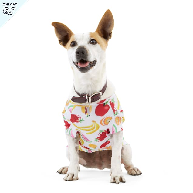 YOULY The Party Animal Fruit-Print Dog T-Shirt, X-Small - Carousel image #1